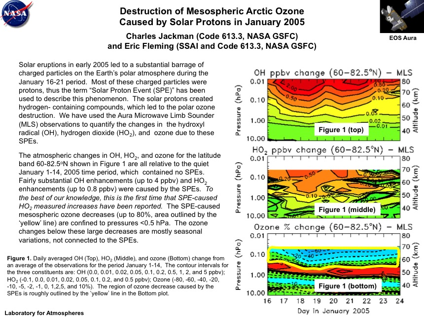 Destruction of Mesospheric Arctic Ozone Caused by Solar Protons in January 2005