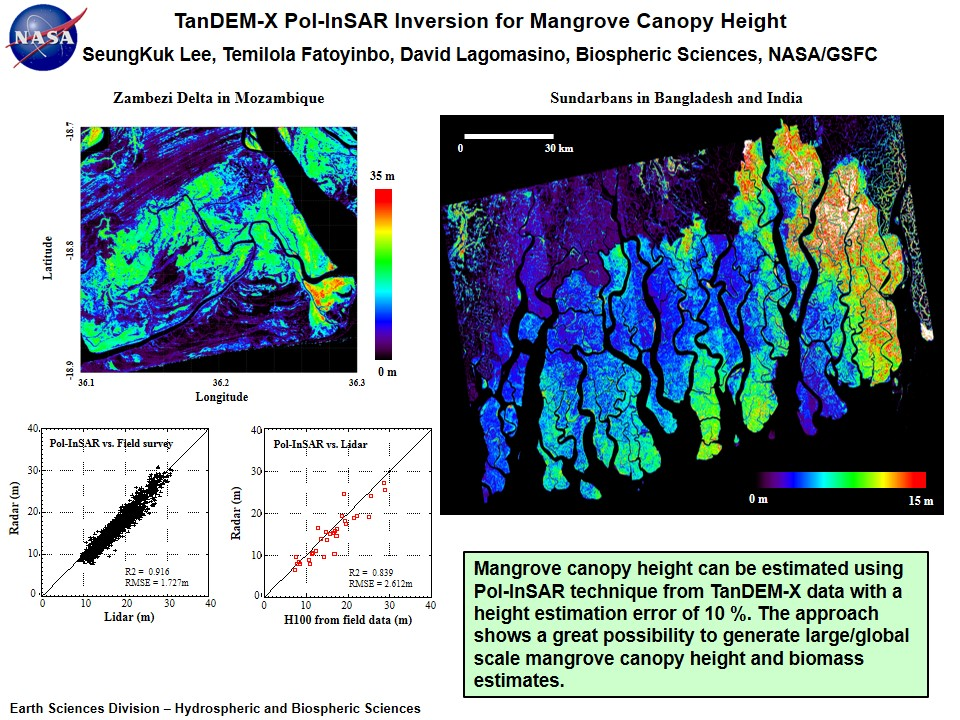 TanDEM-X Pol-InSAR Inversion for Mangrove Canopy Height