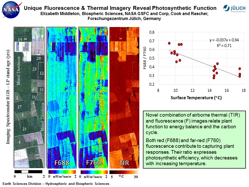 Unique Fluorescence & Thermal Imagery Reveal Photosynthetic Function