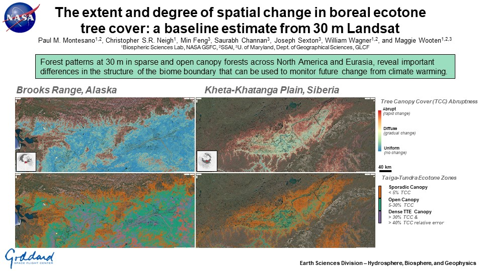 The extent and degree of spatial change in boreal ecotone tree cover: a baseline estimate from 30 m Landsat