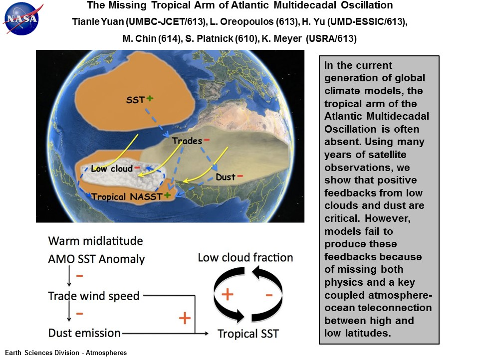 The Missing Tropical Arm of Atlantic Multidecadal Oscillation