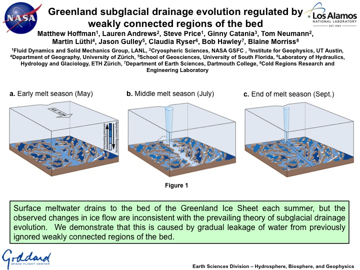 Greenland subglacial drainage evolution regulated by weakly connected regions of the bed