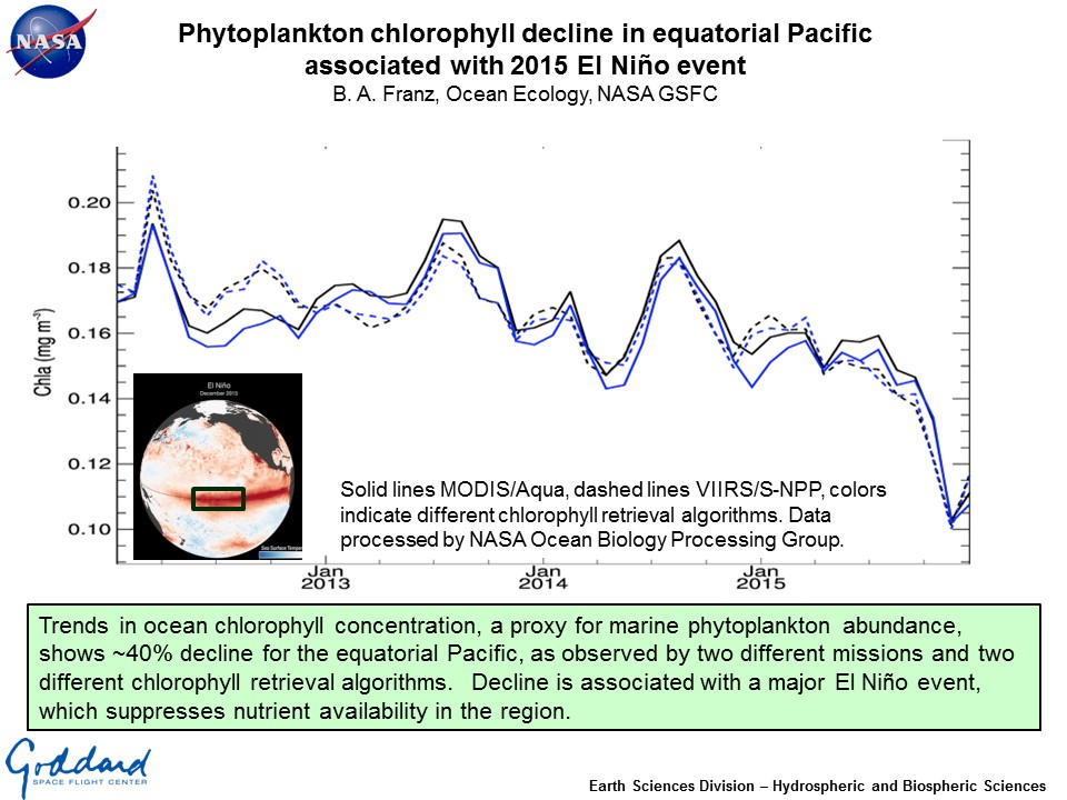 Phytoplankton chlorophyll decline in equatorial Pacific  associated with 2015 El Niño event