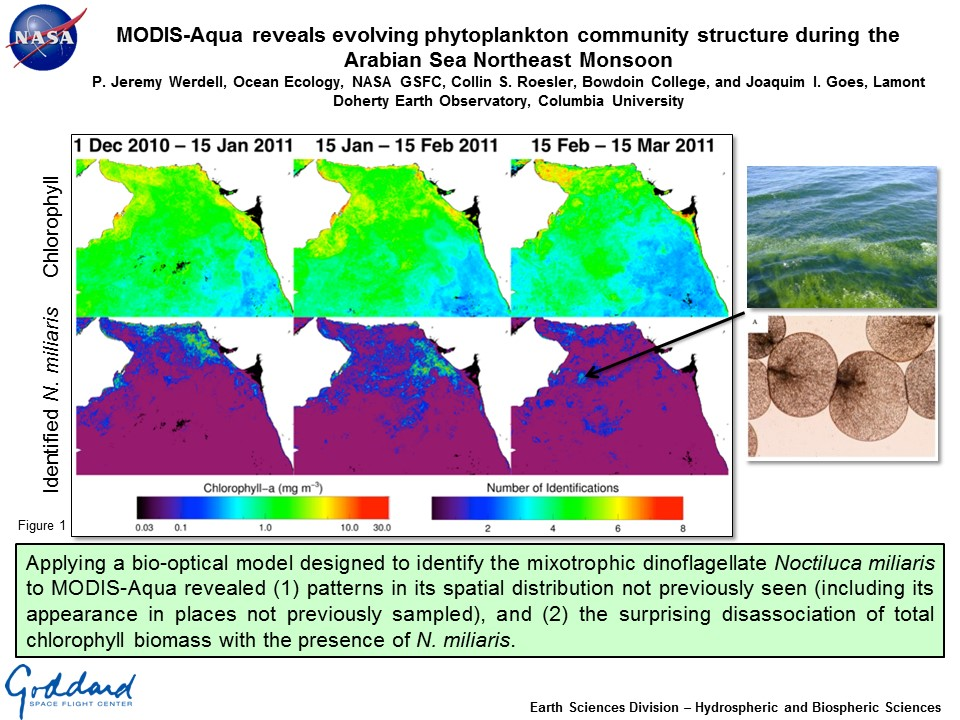 MODIS-Aqua reveals evolving phytoplankton community structure during the Arabian Sea Northeast Monsoon