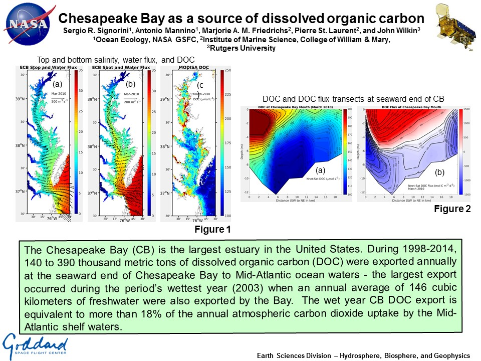 Chesapeake Bay as a source of dissolved organic carbon