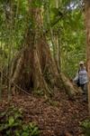 Laura Duncanson (618 Postdoctoral Fellow) doing Rainforest Field work in Mondah Forest, Gabon.