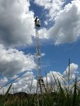 The automated FUSION sensor system is mounted atop a 10 m tall tower in the USDA Beltsville Agricultural Research Center cornfield. It scans the field measuring bidirectional patterns of spectral reflectance and fluorescence observing diurnal and seasonal changes as part of the Spectral Bio-Indicators study lead by Dr. Elizabeth Middleton (NASA, Code 618).