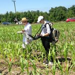 Dr. Qingyuan Zhang (USRA, Code 618) and Kristin Frye, a summer student, measure canopy spectral reflectance and fluorescence in the USDA Beltsville Agricultural Research Center cornfield. The Spectral Bio-Indicators group studies the relationships between plant responses to environmental conditions and their optical characteristics.