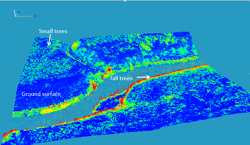 3D View of Canopy Height Model from WorldView Stereo Image  (courtesy Chris Neigh, Jon Ranson)