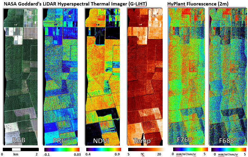Airborne Remote Sensing Estimates of Photosynthetic Variables from Parker Tract, North Carolina, 2013 (courtesy Elizabeth Middleton and Bruce Cook)