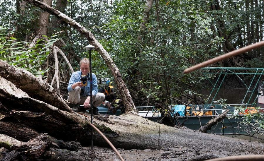 Suzanne Marselis (University of Maryland) getting GPS point in Pongara National Park Mangrove Forest.