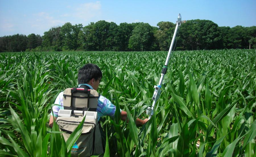Yen-Ben Cheng (formerly of ERT and Code 618) measures canopy spectral reflectance with using a backpack spectroradiometer in the USDA Beltsville Agricultural Research Center cornfield as part of the Spectral Bio-Indicators study lead by Dr. Elizabeth Middleton (NASA, Code 618).
